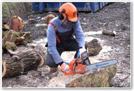 chainsaw-training-courses